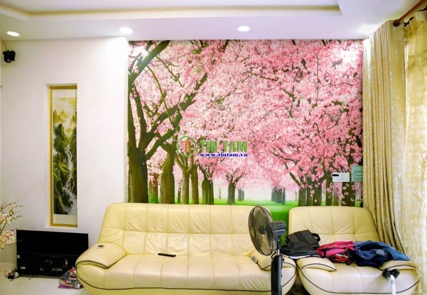 giay-dan-tuong-dep-tphcm-IMG_3021-2-min